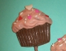 Cupcakes: Brown and Pink
