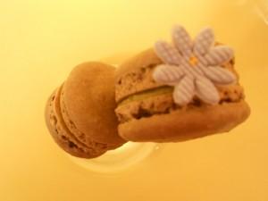 macarons_flower1